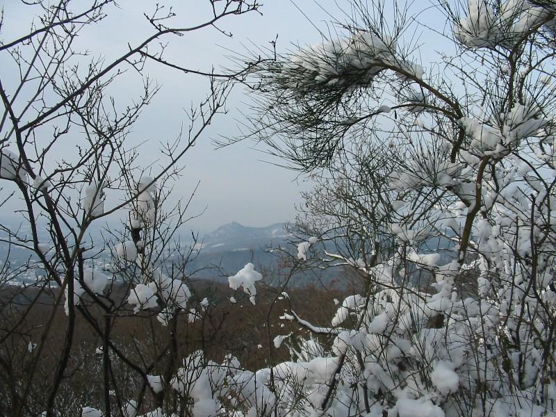 Pics vom Biken im Winter  Draussen!!!  Seite 2  MTBNewsde